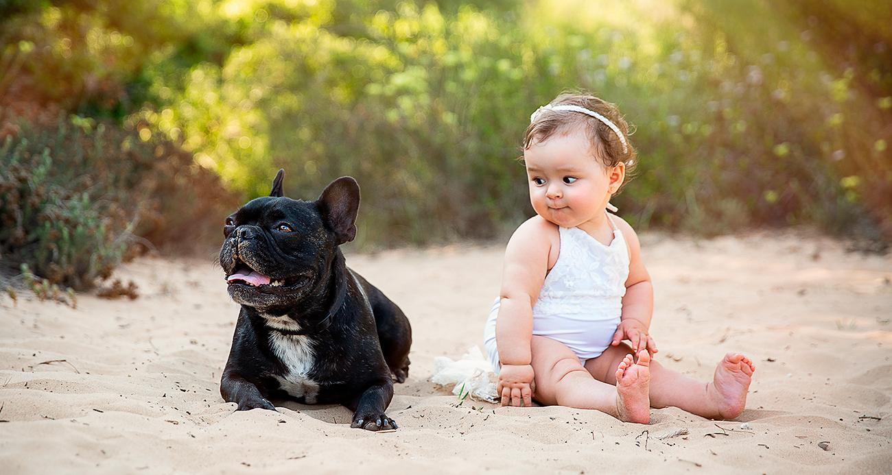 Fotografía de bebe con perros