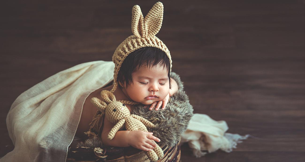 Bebe conejo